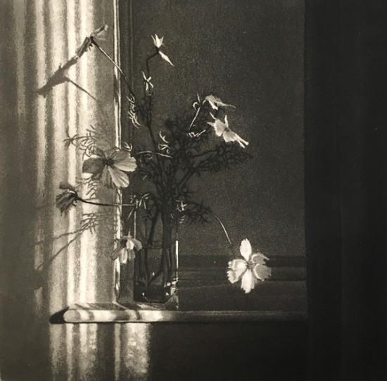 Anja Percival new - Window Light XXIII