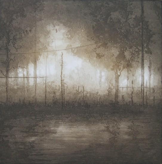 Anja Percival new - Rural Light