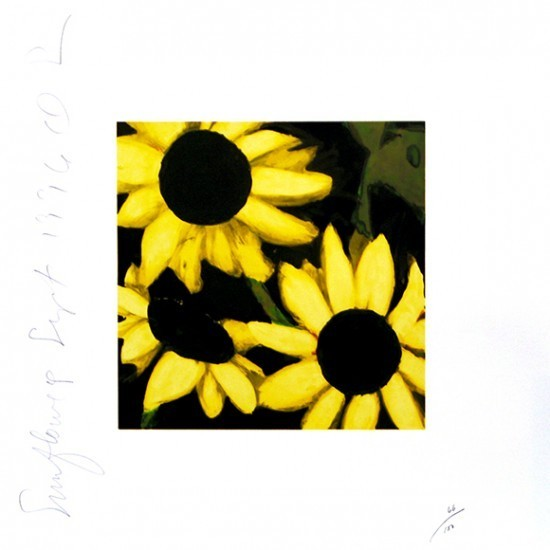 Donald Sultan - Sunflowers