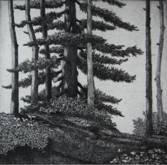 Eric Goldberg - Prints - Dyer Bay
