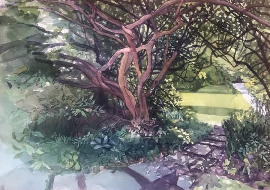 Jane Goldman - Prints - Secret Garden