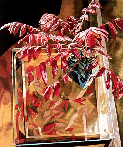Jane Goldman - Prints - Sumac on Glass