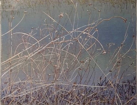 Jean Gumpper - Prints - Marsh Grass