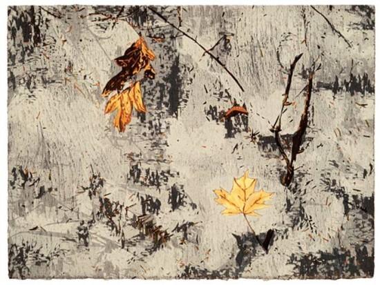 Jean Gumpper - Prints - Frozen Leaves