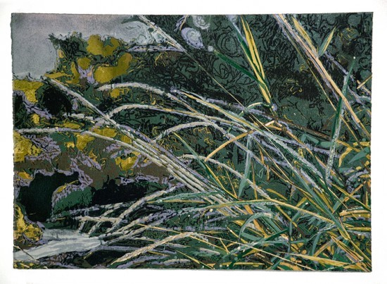 Jean Gumpper - Prints - Grass