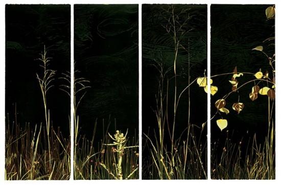 Jean Gumpper - Prints - Sounds of Rain (I, II, III, IV)
