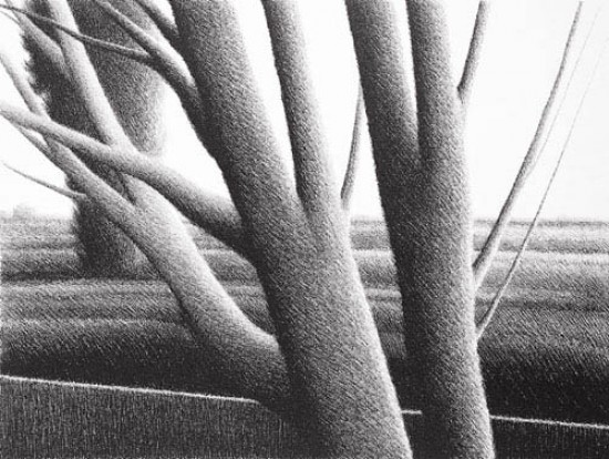 Robert Kipniss - Lithographs - Thick Trees