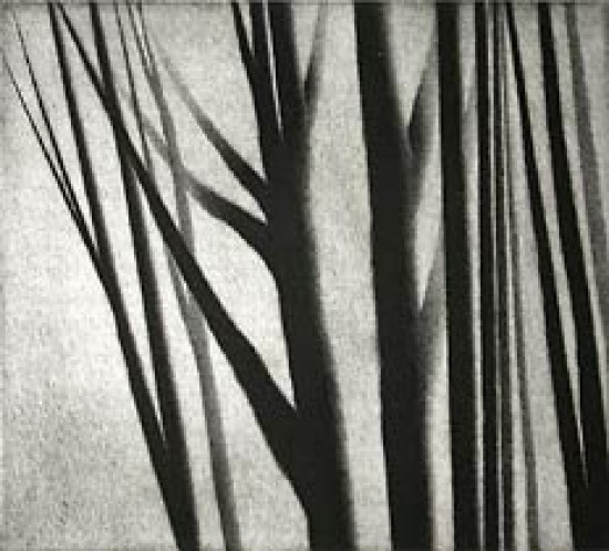 Robert Kipniss - Mezzotints - Composition, Upstate