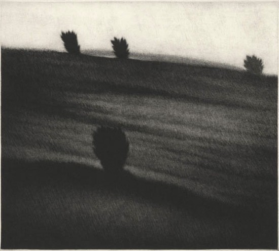 Robert Kipniss - Mezzotints - Crest with trees