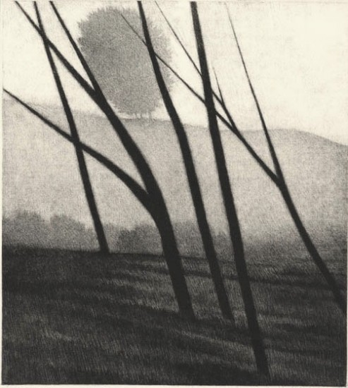 Robert Kipniss - Mezzotints - Five trees and hillside