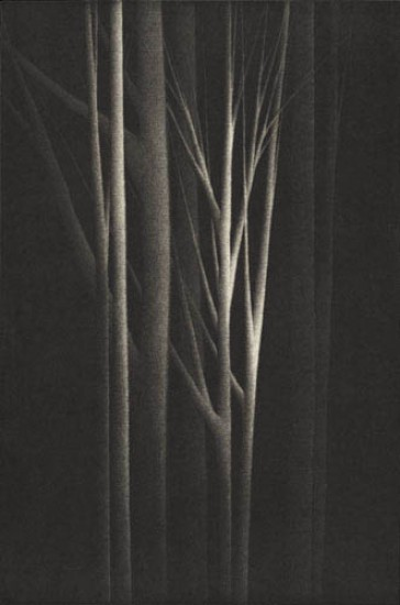 Robert Kipniss - Mezzotints - Forest nocturne IV