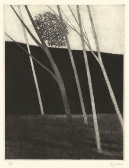 Robert Kipniss - Mezzotints - Four white trees