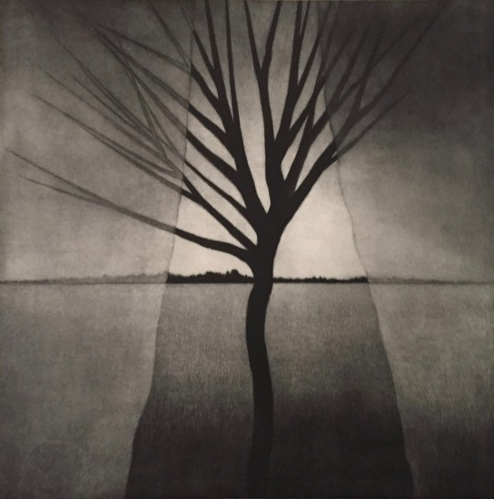 Robert Kipniss - Mezzotints - Landscape w curtains & crooked tree