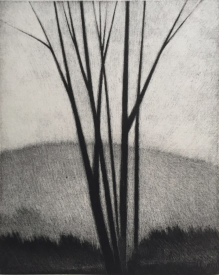Robert Kipniss - Mezzotints - Leafless stand