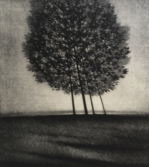Robert Kipniss - Mezzotints - Leaning trees