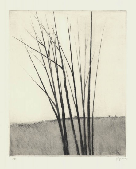 Robert Kipniss - Mezzotints - Meadow w/six trees