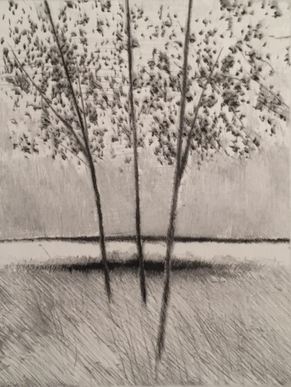 Robert Kipniss - Mezzotints - Three trees, late afternoon (Rain at noon)
