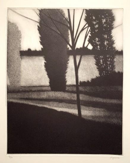 Robert Kipniss - Mezzotints - Sapling & three trees