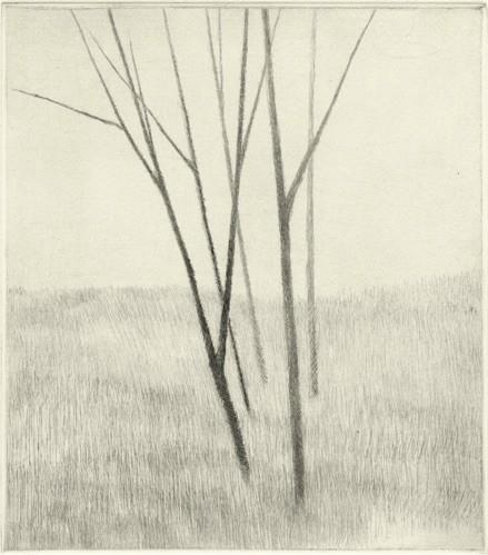 Robert Kipniss - Mezzotints - Slope w/ five trees