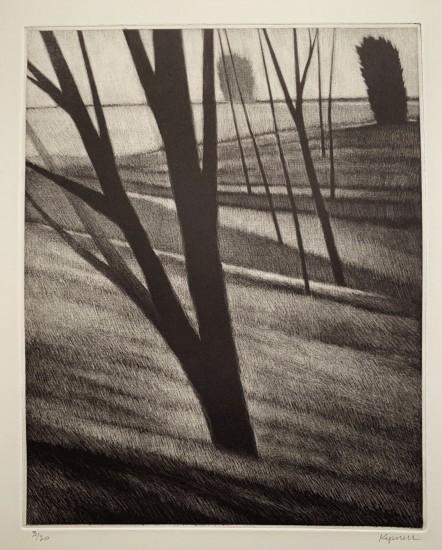 Robert Kipniss - Mezzotints - Slope w / seven trees