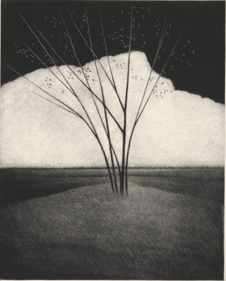Robert Kipniss - Mezzotints - The white mountain