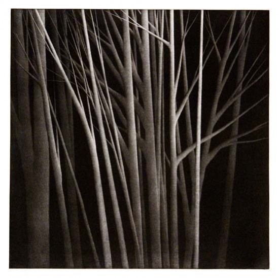 Robert Kipniss - Mezzotints - An island in the forest
