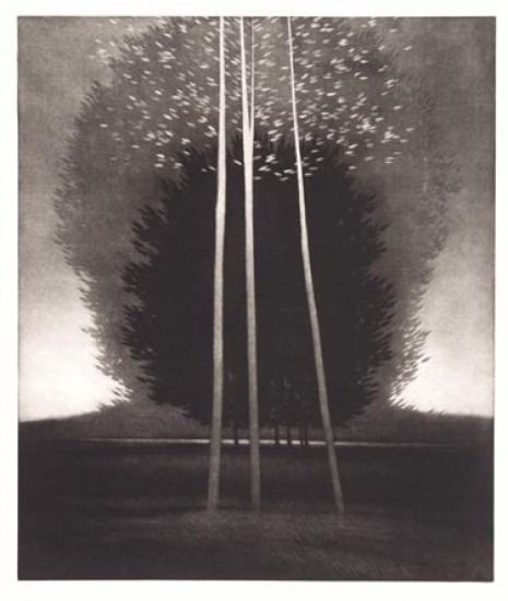 Robert Kipniss - Mezzotints - Echo trees & shadow