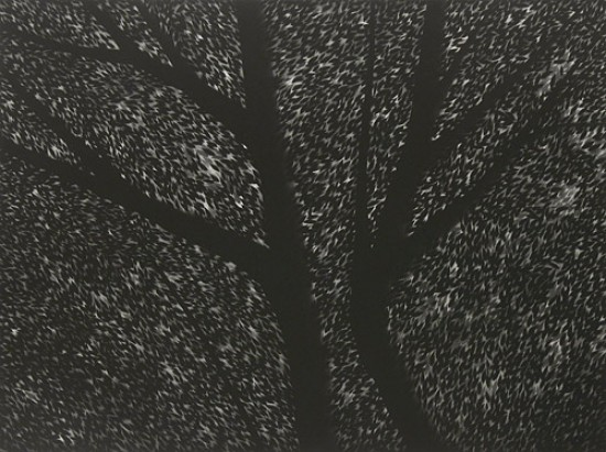 Robert Kipniss - Mezzotints - For Laurie