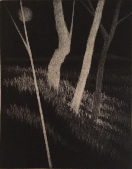 Robert Kipniss - Mezzotints - Three pale trees