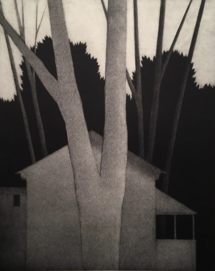 Robert Kipniss - Mezzotints - Hidden trees