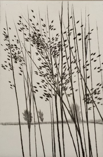 Robert Kipniss - Mezzotints - Windbreak