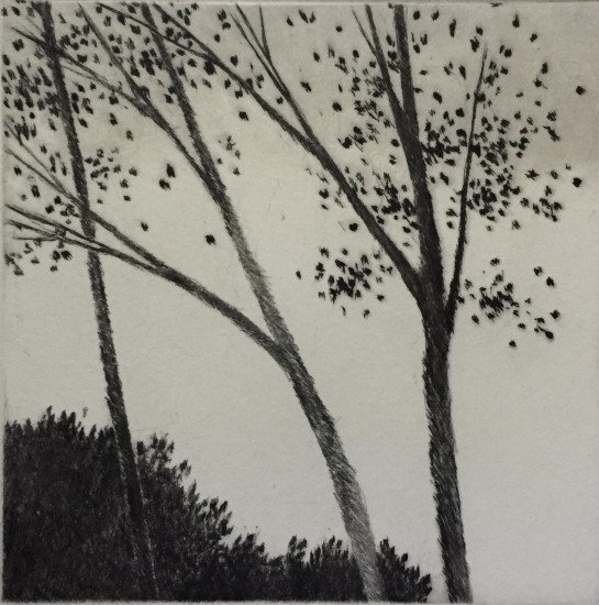 Robert Kipniss - Mezzotints - September breeze