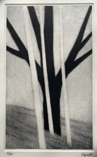 Robert Kipniss - Mezzotints - Three white trees