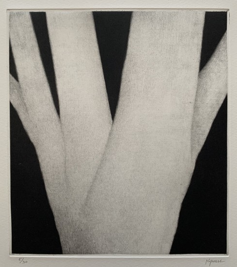 Robert Kipniss - Mezzotints - Mother