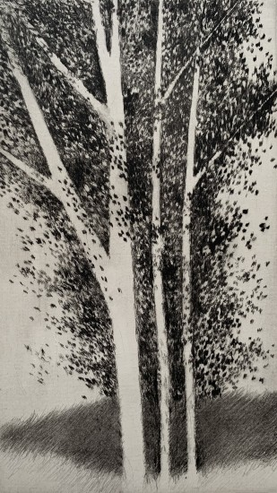 Robert Kipniss - Mezzotints - Three birches