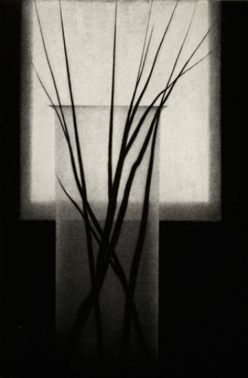 Robert Kipniss - Mezzotints - Vase w/small branches