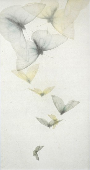 Mikio Watanabe - Descente