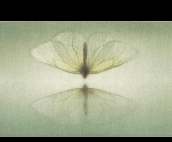 Mikio Watanabe - Mirage