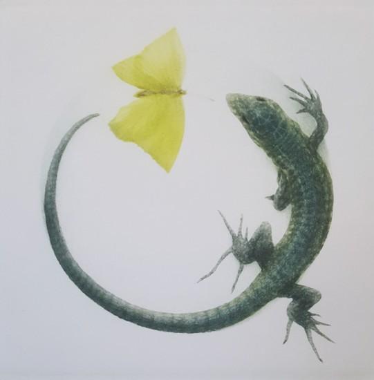 Mikio Watanabe - Tolerance