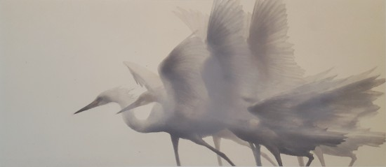 Mikio Watanabe - Viser vers