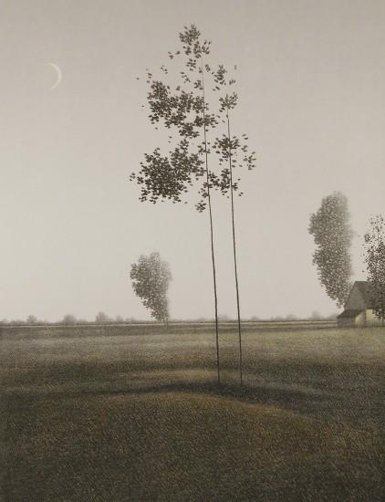 Online Exhibition - 17 Fields at Twilight