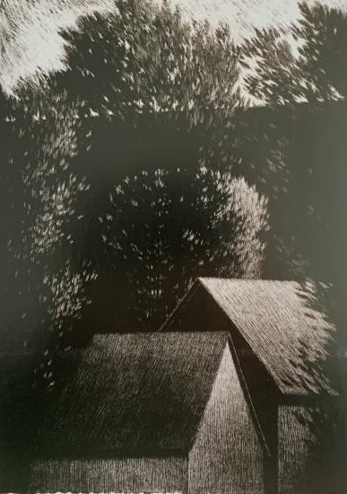 Online Exhibition - 8 Through Trees