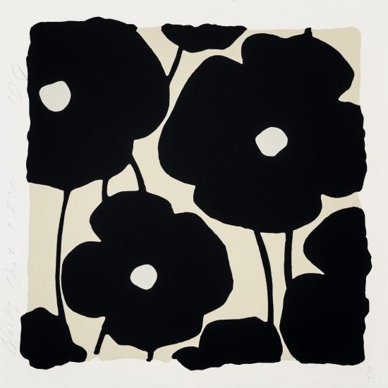 Recent Additions - Three Poppies, Blacks, Dec 2, 2020
