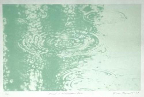 Rica Bando - Pond / Midsummer Rain