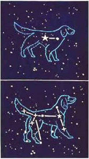 Richard Bosman - Canis Major/Minor
