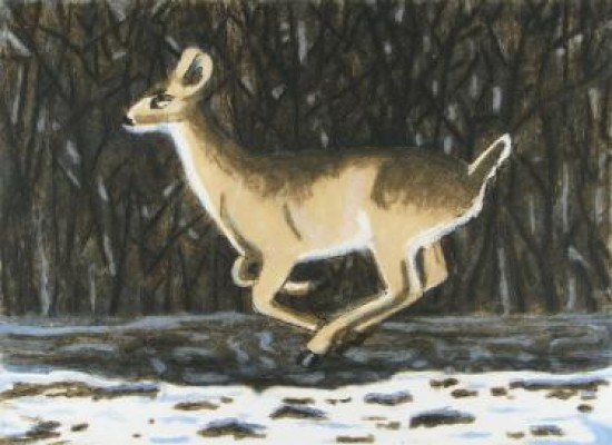 Richard Bosman - Winter Deer