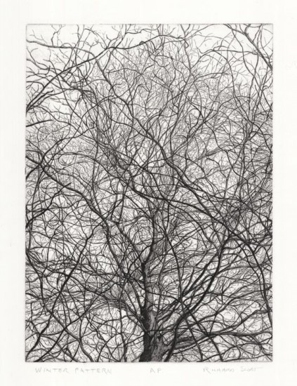 Richard Sloat - Prints - Winter Pattern