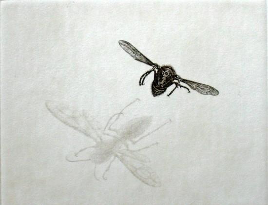 Takuji Kubo - Hornet