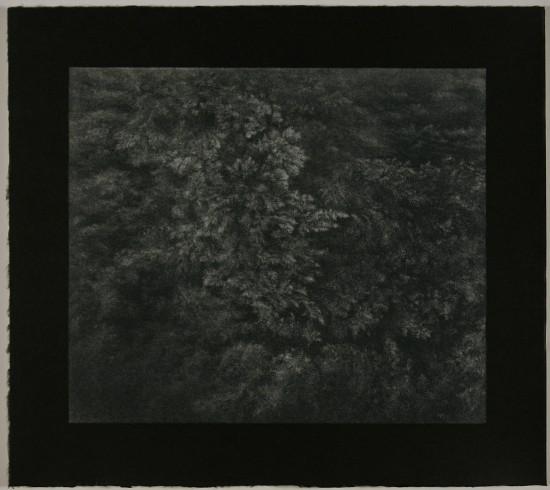 Tomomi Ono - underwater VI