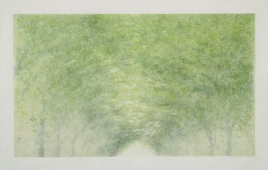 Tomomi Ono - Woods - Aboveground